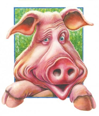 Regard cochon - Encre et crayon de couleur