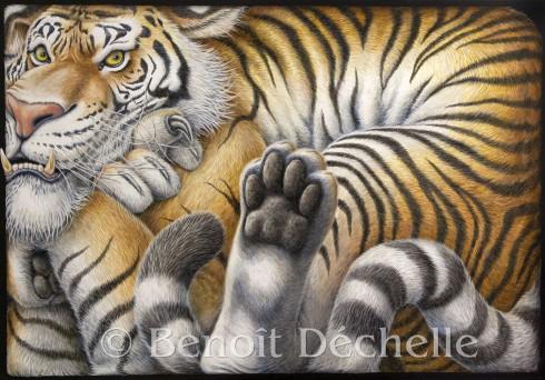 Tigre coincé – Acrylique sur toile – 116 x 81 cm
