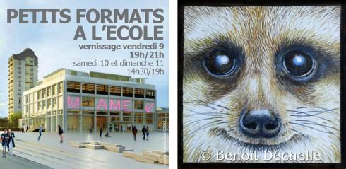 petits-formats-2016-regard-suricate-regard-benoit-dechelle