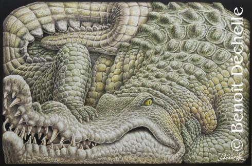 Crocodile coincé - Acrylique sur toile - 97 x 146 cm